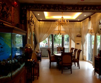 Rental villa Phu My Hung