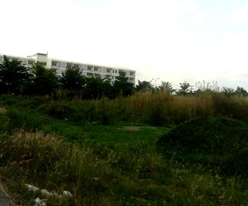 Plot for sale Ho Chi Minh City