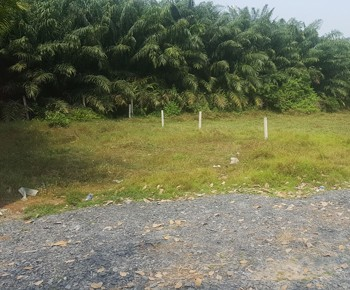 Land for sale Cu Chi district